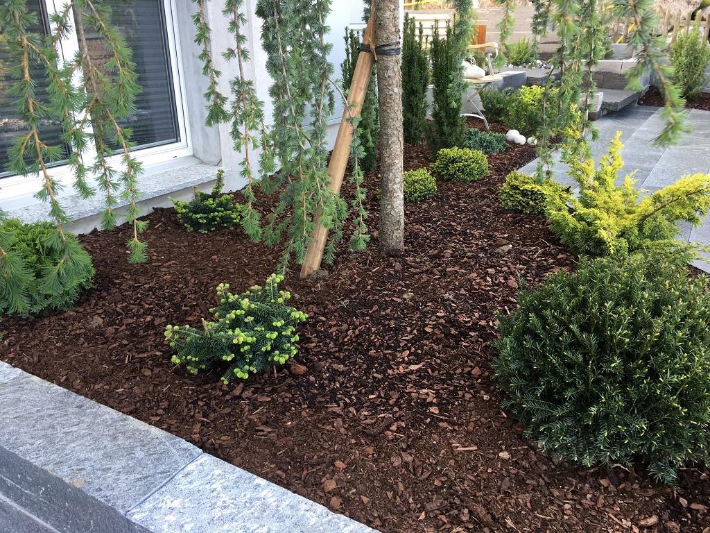 Evergreen Gartenbau evergreen gartenbau hausdesign pro