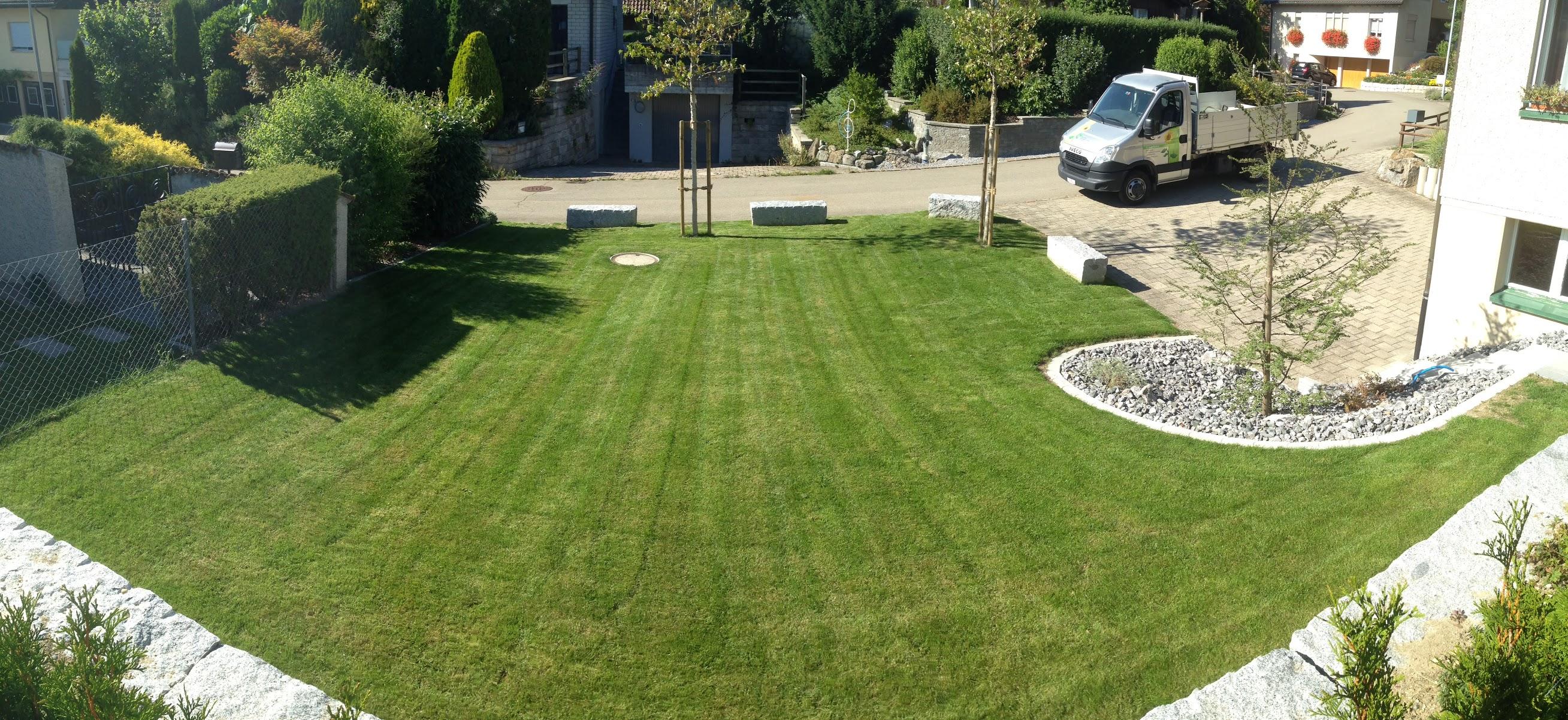 Gartenanlage Münchwilen erstellt durch Remo Schefer Gartenpflege & Gartenbau Wuppenau Thurgau